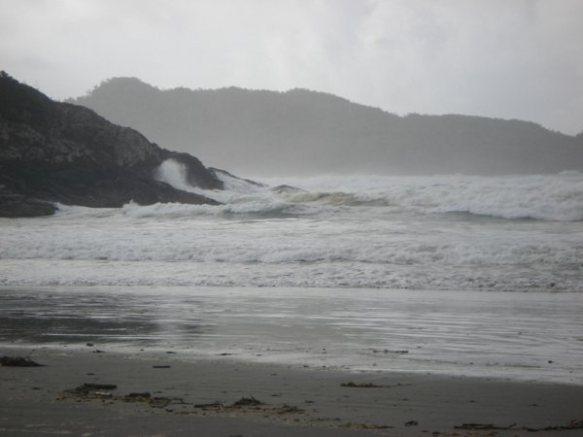 waves at Tofino